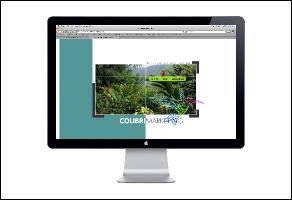 colibri-marketing-website